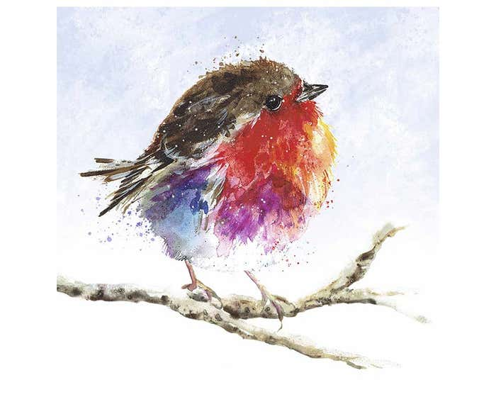 Robin Red Breast Christmas Cards AW21
