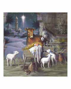 The Stable Christmas Cards
