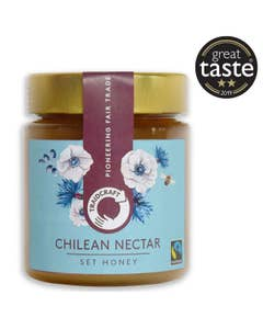 Traidcraft Chilean Nectar Set Honey (500g)