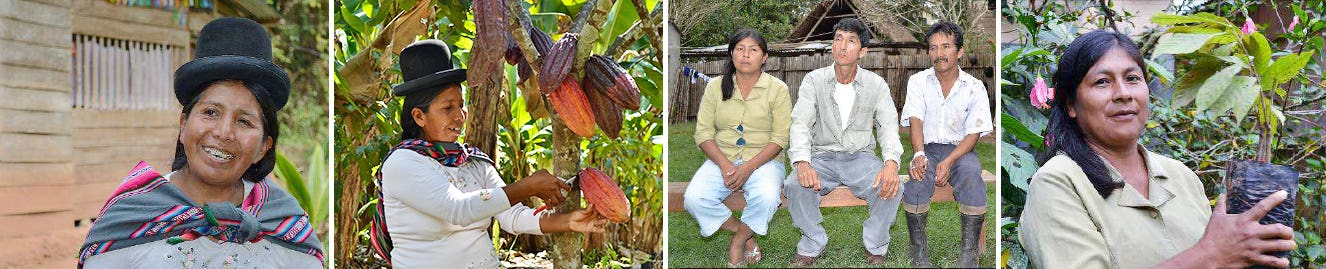Chocolate producers
