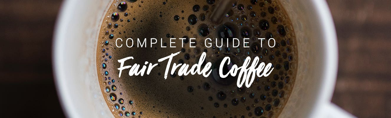 Complete guide to coffee