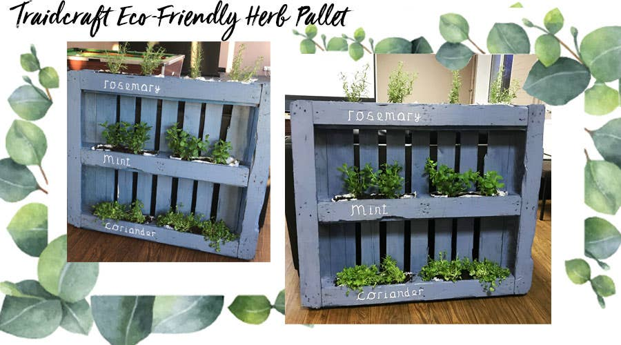 Traidcraft's upcycled wooden pallet, recycled for all staff to use as a herb rack