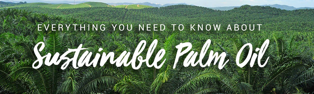 Sustainable palm oil - everything you need to know