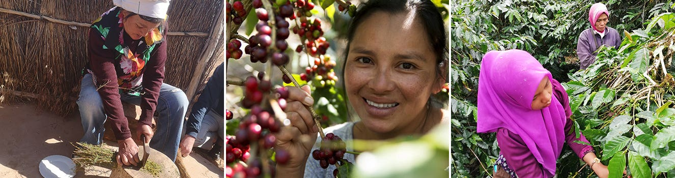 Examples of producers who have benefited from fair trade