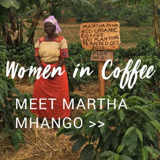 Women in Coffee - Mzuzu coffee