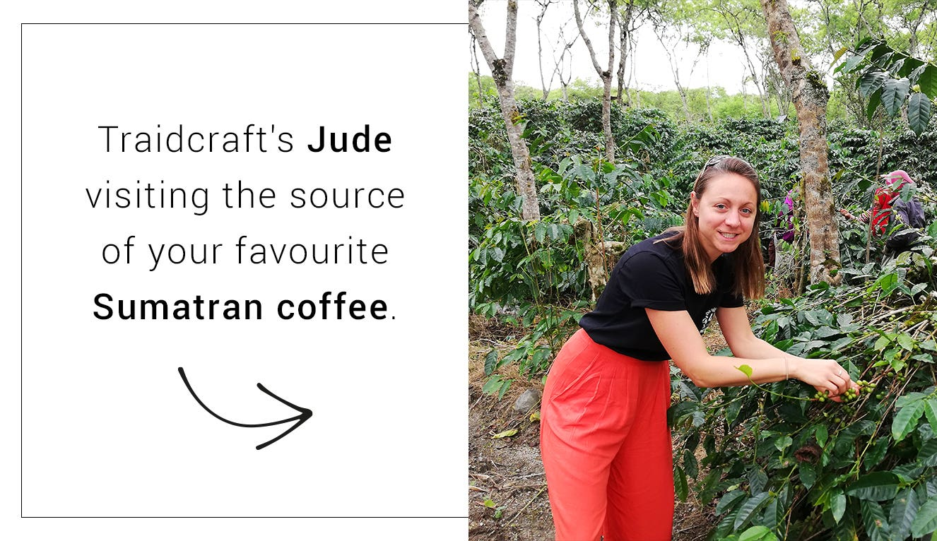 Traidcraft's Jude in Sumatra, at a fair trade coffee plantation